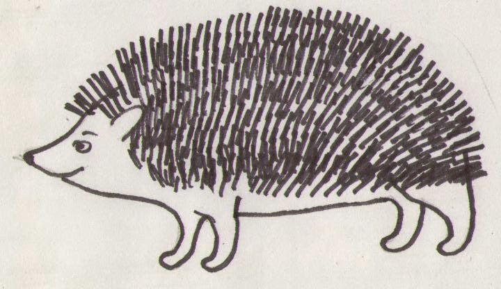 Как карандашом нарисовать папоротник карандашом поэтапно
