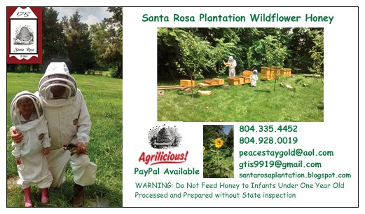 Santa Rosa Plantation Wildflower Honey Farm