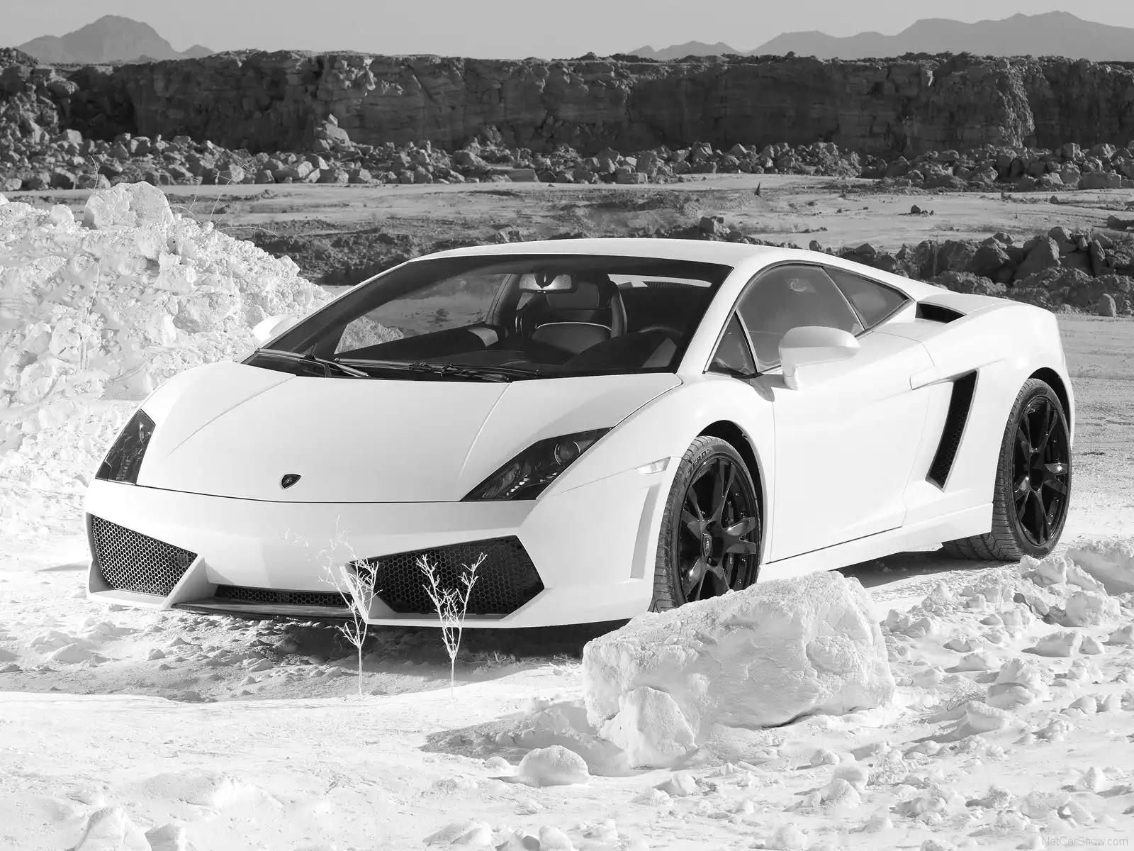 Hình ảnh siêu xe Lamborghini Gallardo LP560-4 2009 & nội ngoại thất