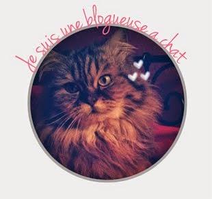 Je suis une blogueuse à chat
