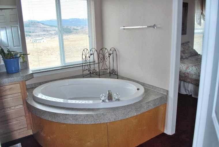 Master Bedroom soaking tub