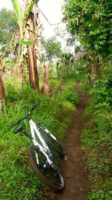 Jalan setapak yang saya eksplore di Puncak Buring.