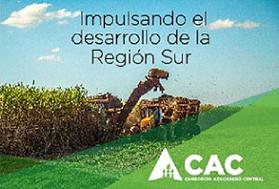 Consorcio Azucarero