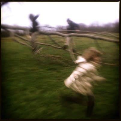 kids running trees