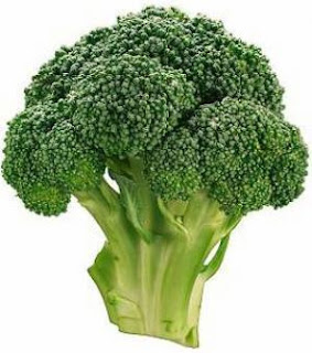 Trimming the Pounds by Eating the Right Foods - Broccoli