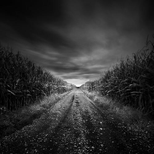 field,black wallpaper black color black screen black background black page