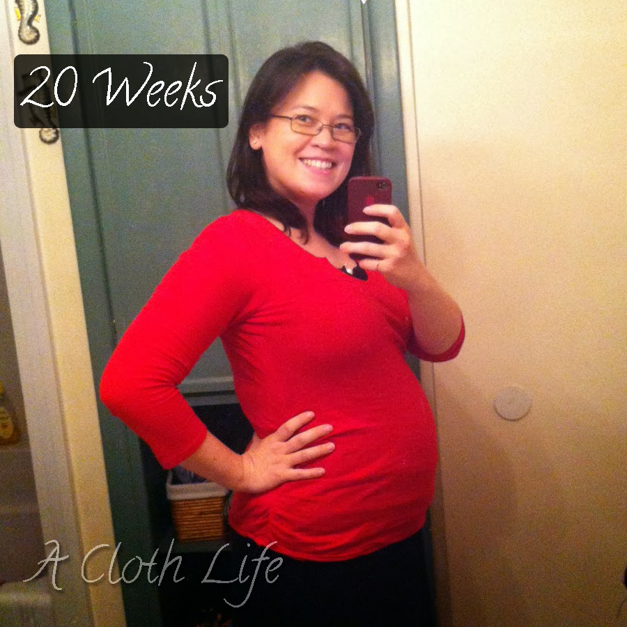 A Cloth Life: belly update 20 weeks