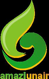 Logo Amazi