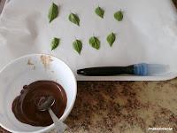 chocolate derretido y hojas