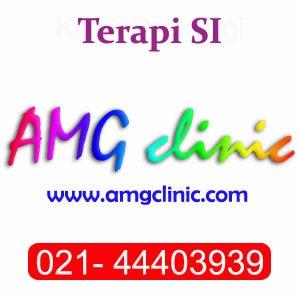 Terapi SI