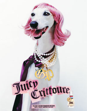 Dji juicy couture for Couture meaning in english