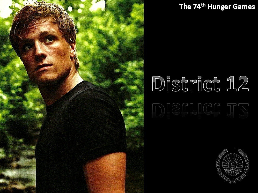 The hunger games movie series