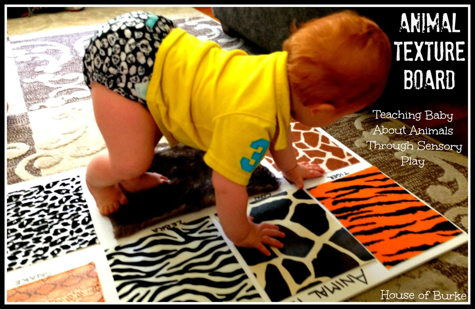 Animal Texture Board Teaching Baby on Zoo Animal Fine Motor Activity