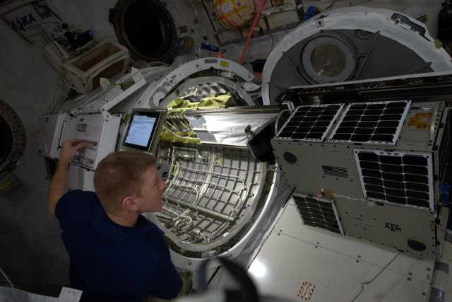 UK astronaut Tim Peake KG5BVI preparing AggieSat4 for deployment