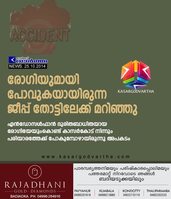 Cheruvathur, Accident, Endosulfan, Kerala, Kasaragod, Injured, Jeep accident in Cheruvathur.