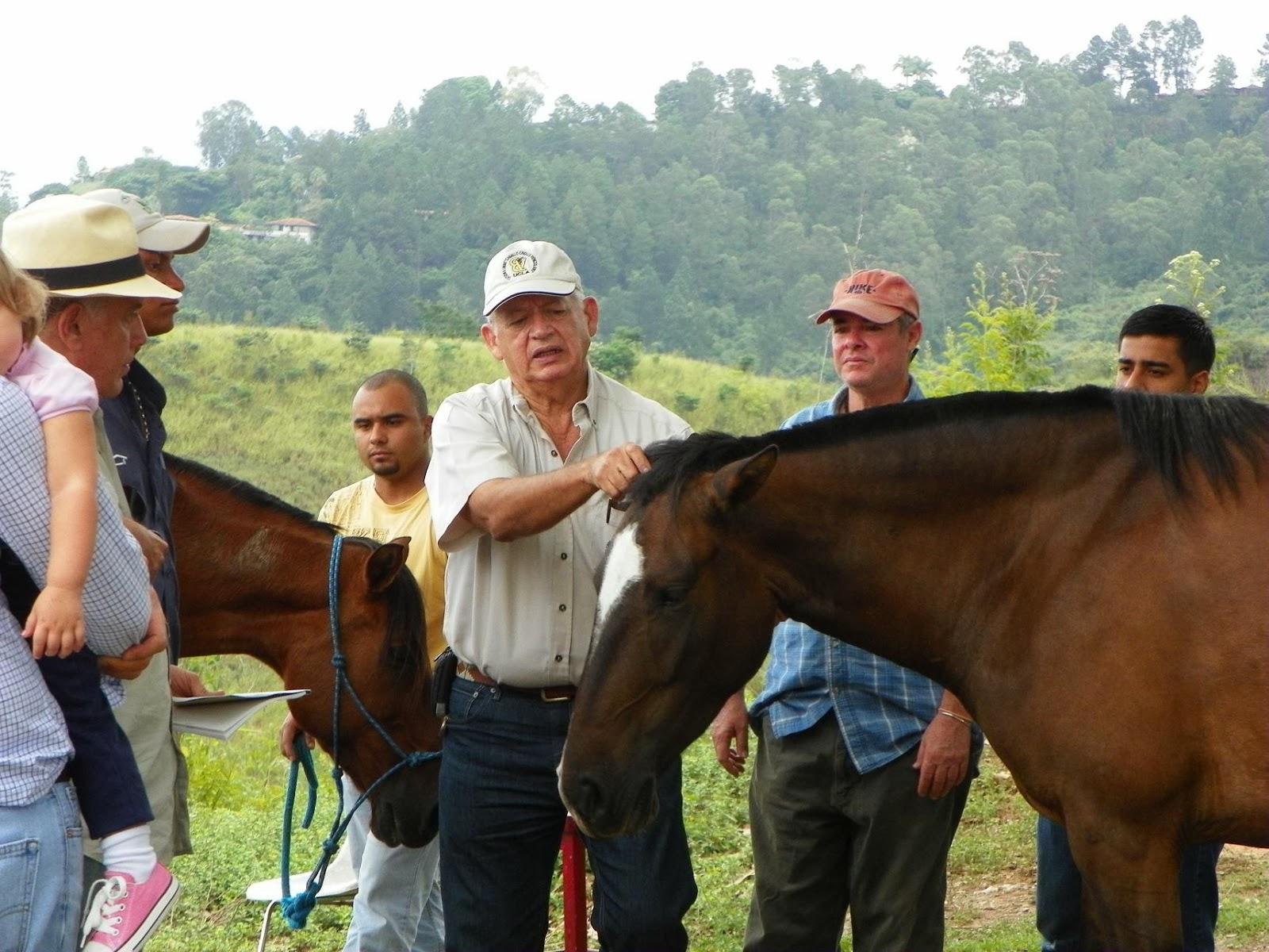 Los primeros diez años de La Cátedra Libre para el estudio y la conservación del \u0026quot;Caballo Criollo Venezolano\u0026quot;