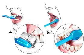 Bagaimanaagar aktifitas menyikat gigi sebelum tidur menjadi kebiasaan