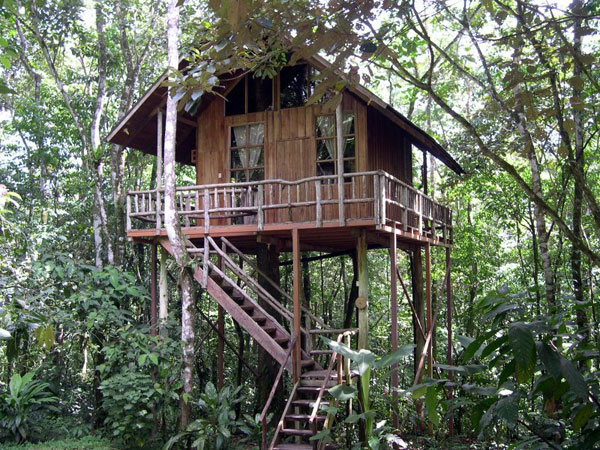 Gypsy g travel costa rican tree house for Costa rica house plans