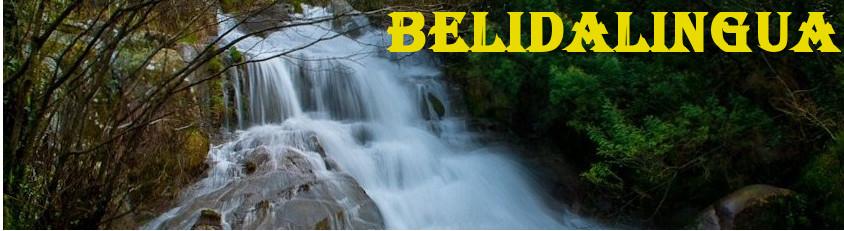 belidalingua