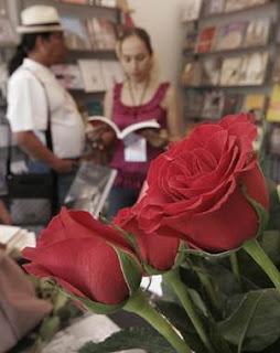 Fiesta del Libro y La Rosa 2013