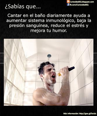 Sab as que los beneficios de cantar en la ducha - Canciones para la ducha ...