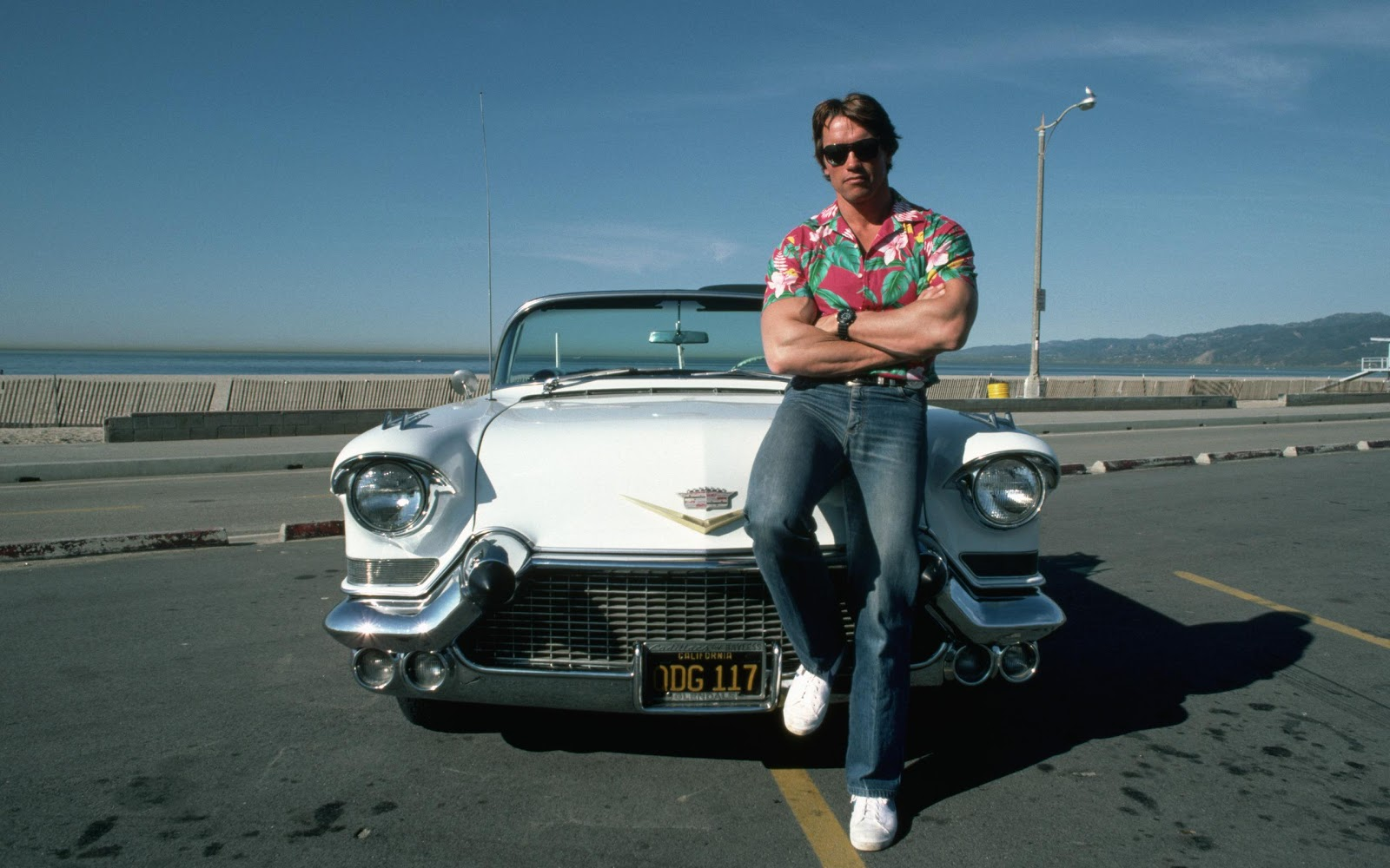 arnold schwarzenegger body awesome pictures,wallpapers and hd ... Arnold Schwarzenegger
