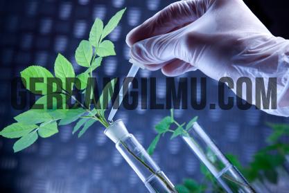 Sejarah Singkat Bioteknologi
