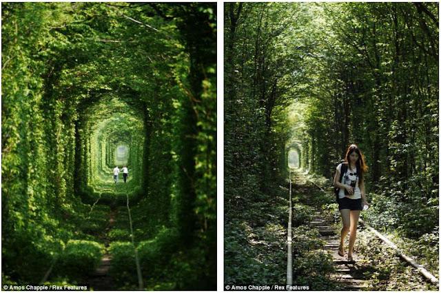 Sejuknya Terowongan Cinta Di Ukraina... [ www.BlogApaAja.com ]