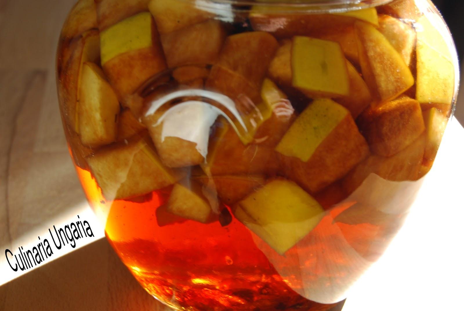 Culinaria Ungaria: Test: Selbstgemachter Quitten-Likör