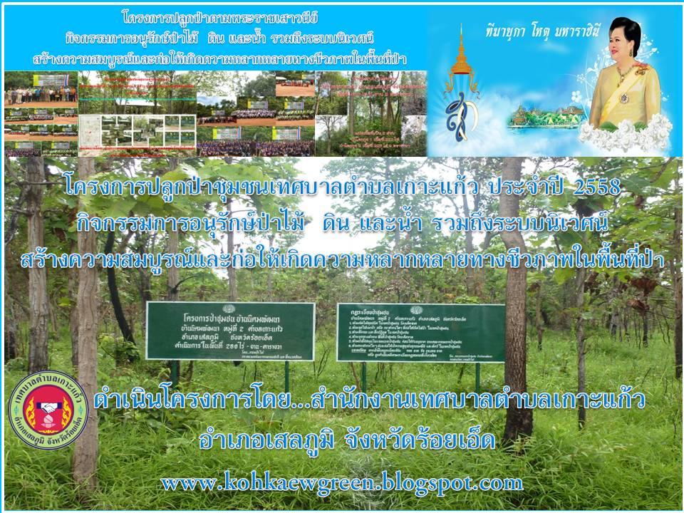 โครงการปลูกป่าชุมชน ปี 58