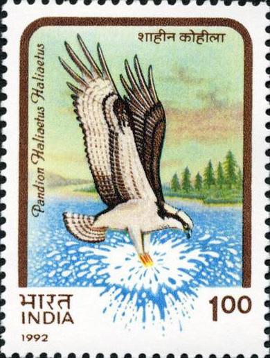 Gandhi Stamps Club King Edward Stamp India Used In Tibet