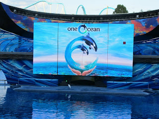 Seaworld Sea World Orlando Shamu One Ocean