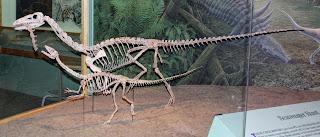 Il Coelophysis visse nel Triassico superiore negli Stati Uniti