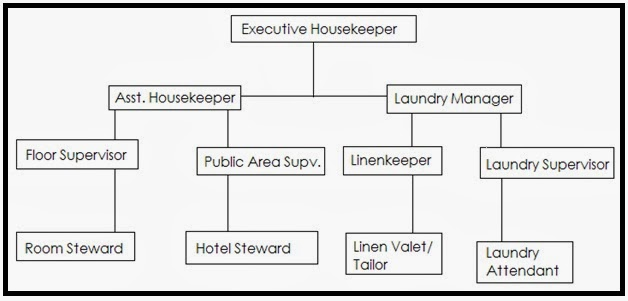 housekeeping deprtment chart picturte in hotl: Housekeeping knowledge for cruise ship personnel