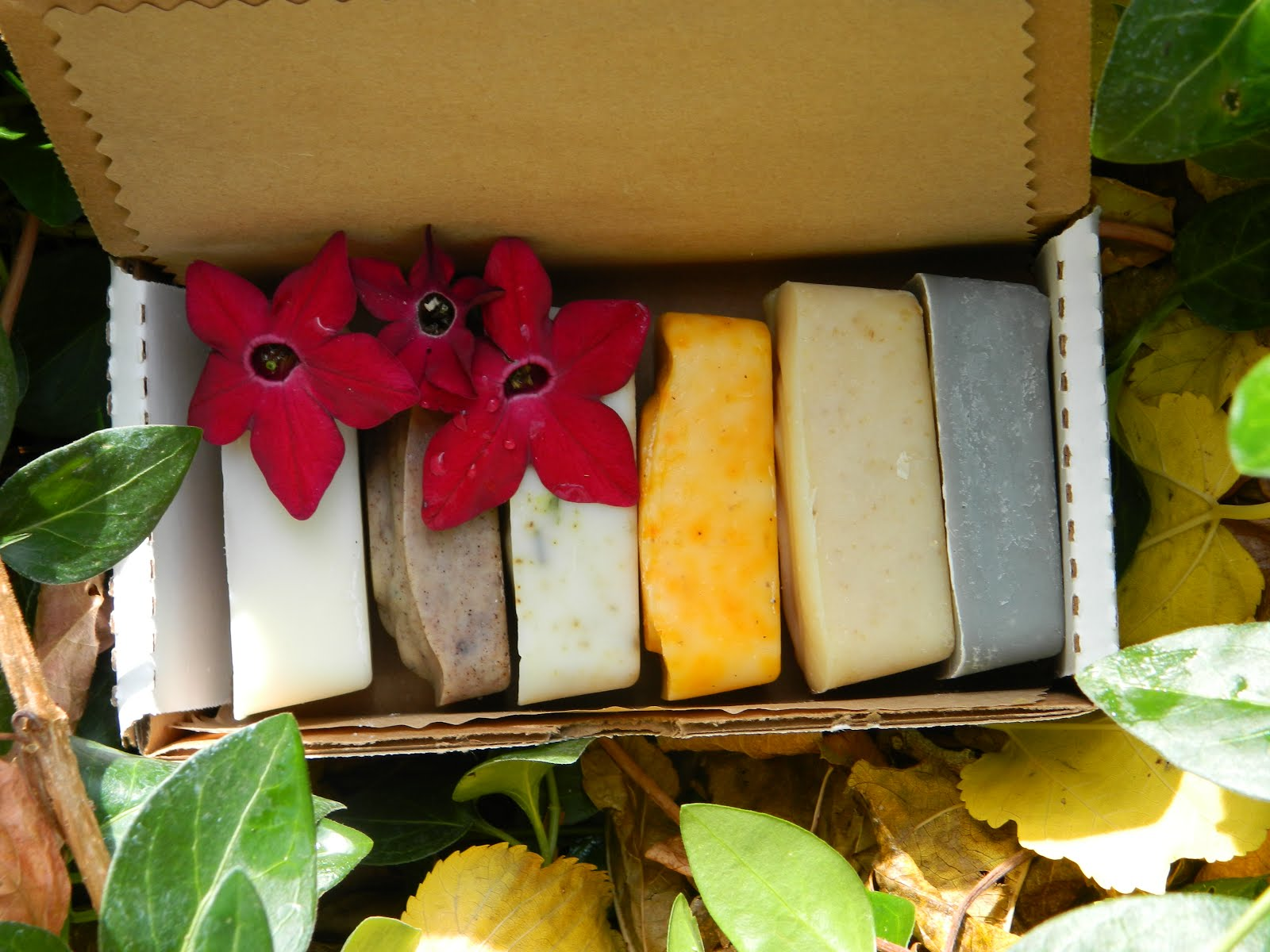 All Natural Skin Loving Soap