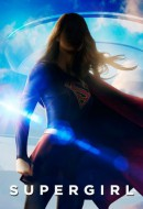 Supergirl Temporada 1 audio espa�ol