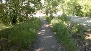 Зеленая алея