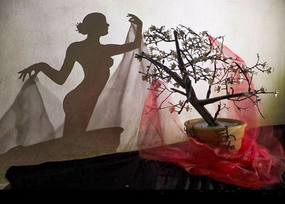07-Sakura-in-Japanese-means-Cherry-Tree-Teodosio-Sectio-Aurea-Shadow-Art-www-designstack-co