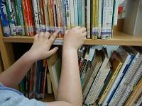 Biblioteca Escolar - Escola E.B.1/JI Major David Neto e JI doFojo