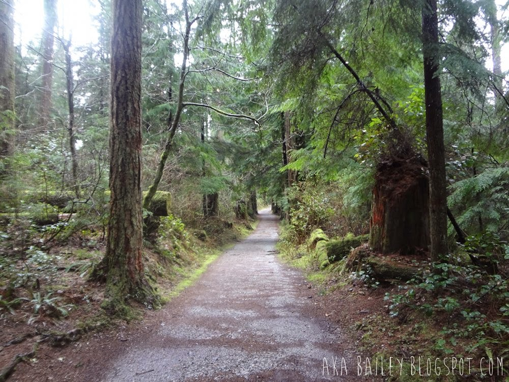 Green and tree-lined trails in Stanley Park in Vancouver