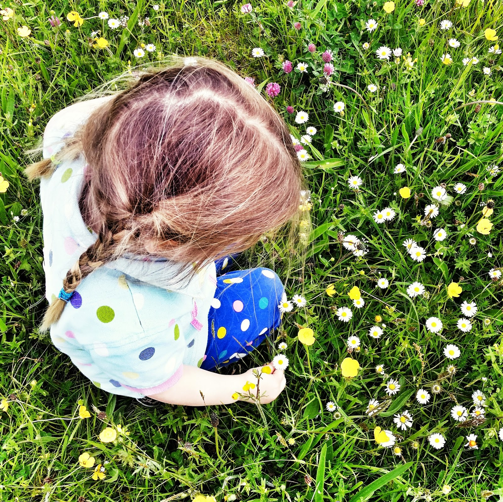 child in daisies