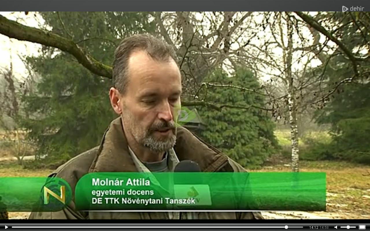 http://www.dehir.hu/dtv/napszemle-2015-02-02/