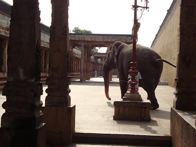 http://4.bp.blogspot.com/-SbW2DEadY8g/TyhAkMncwcI/AAAAAAAACik/IlWPVzHMcJU/s1600/Thiruvanaikaval+temple,+Thiruchipalli,+Tamil+Nadu1211.jpg