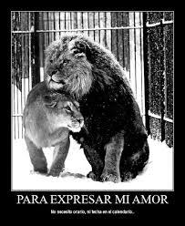 Frases De Amor: Para Expresar Mi Amor No Necesito Horario