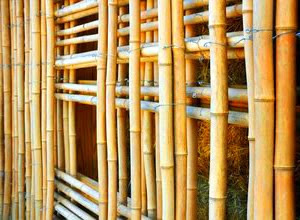 bambu-tradisional.jpg