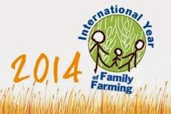2014 ano internacional