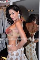 Veena Malik Sizzling hot Photoshoot