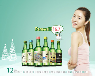 Shin Se Kyung Hot Wallpaper