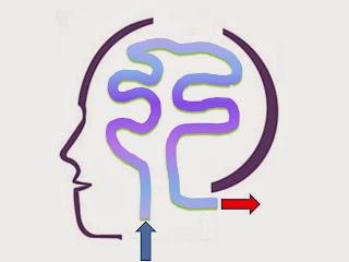 Generalidades de la psiquiatría