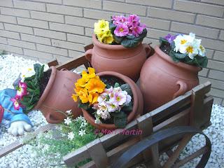 Flowers Spring